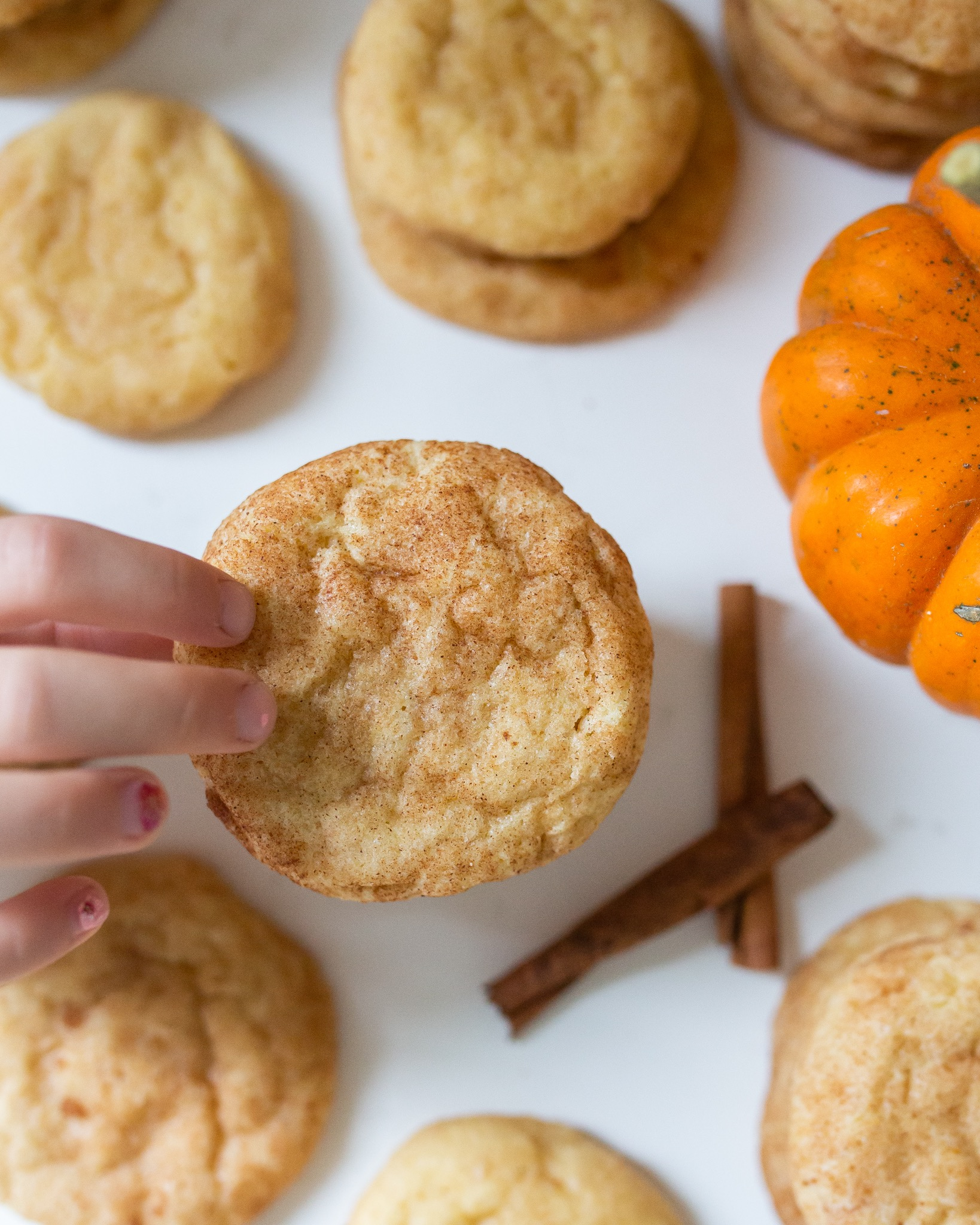 soft and chewy delicious snickerdoodle cookies that will rock your life